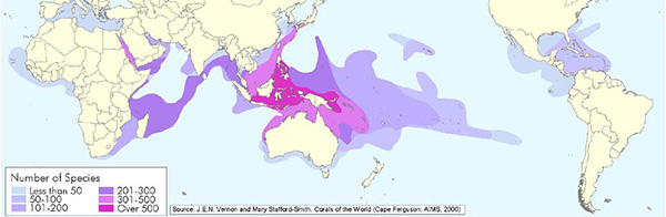 Coral species distibution map