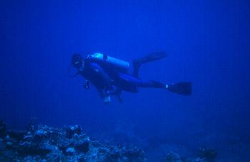 David scuba diving