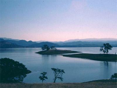 Essays on Wildlife Conservation ~ MarineBio Conservation Society