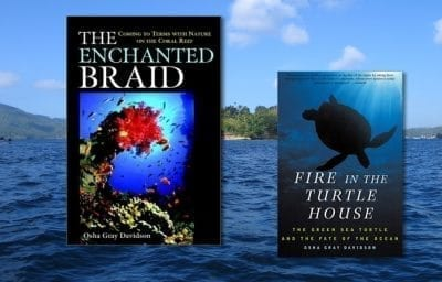The Enchanted Braid: Coming to Term with Nature on the Coral Reef