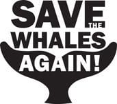 Save the Whales and Dolphins!