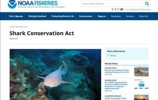 Shark Conservation Act