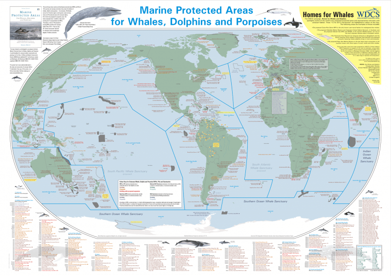 Map of Cetacean MPAs Around the World