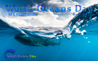 Happy World Oceans Day 2014!