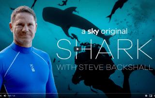 Shark with Steve Backshall First Look Trailer Sky Nature