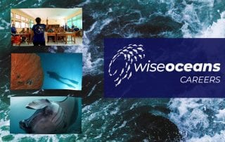 WiseOceans Careers in Marine Science - Lauren Sparks
